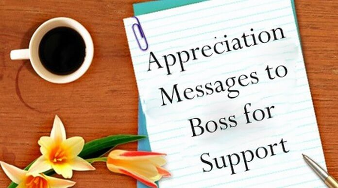 Appreciation message to boss for support