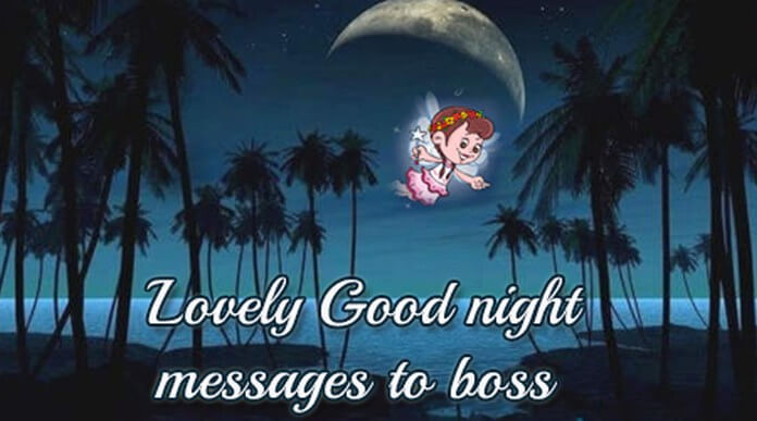 Lovely Good Night Messages to Boss