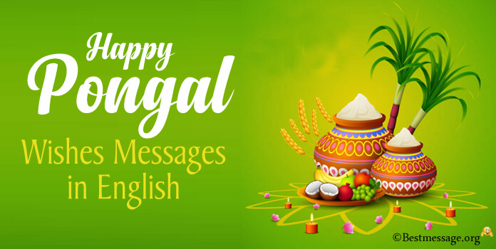 Pongal Wishes Messages