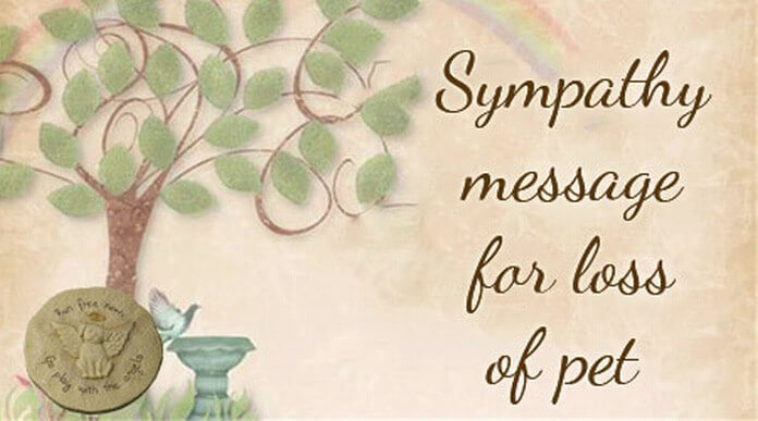 Sympathy message for loss of pet