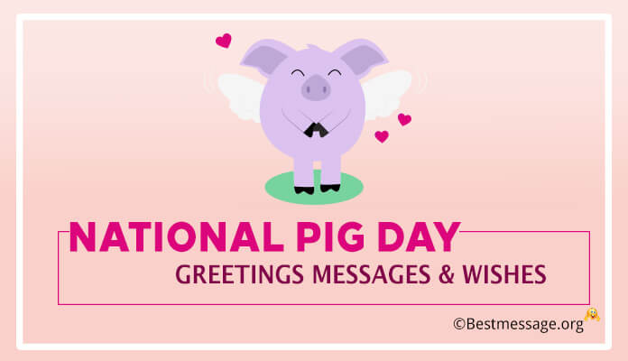 Pig Day Greetings Messages, wishes