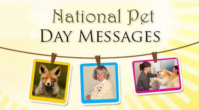 National Pet Day Messages, pet quotes