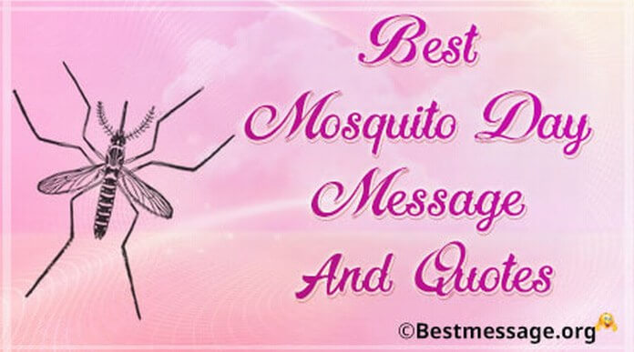 Best mosquito day Message