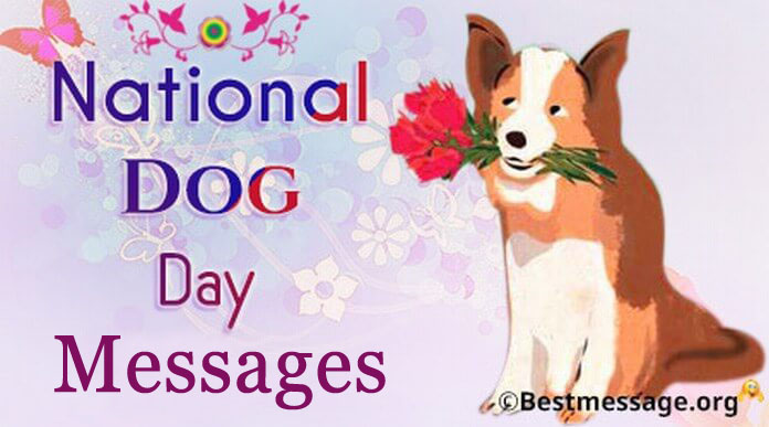 Dog Day Wishes, Messages, Greetings Images