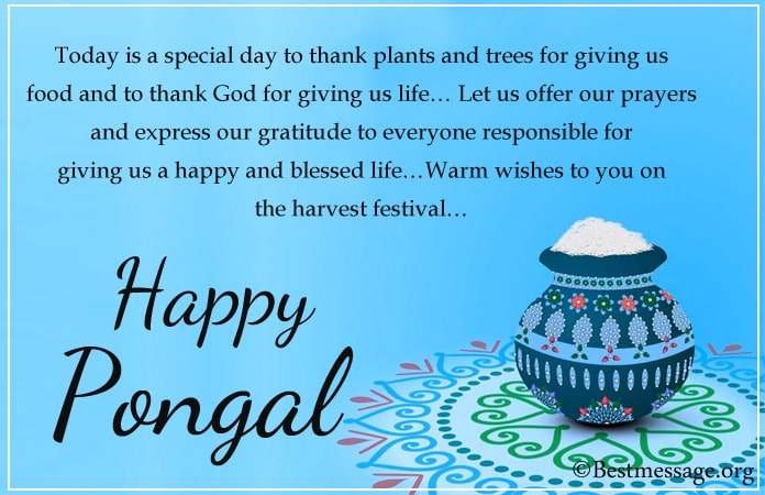Pongal festival images, Pongal Messages Pictures