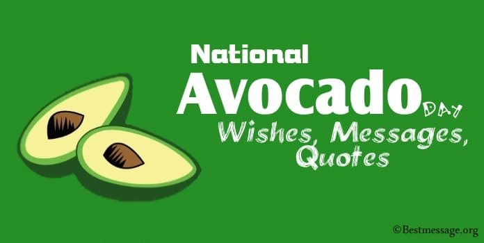 National Avocado Day Wishes, Messages, Quotes