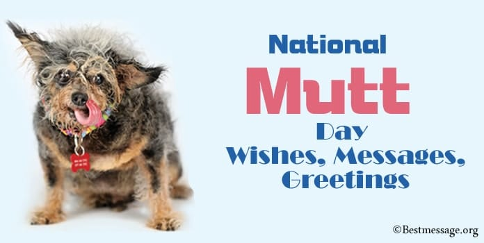 National Mutt Day Wishes, Messages, Greetings
