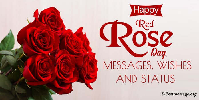 Happy Red Rose Day Messages, Rose Day Wishes Images