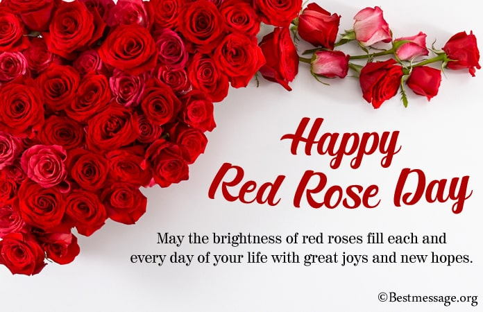 Best Red Rose Day 2021 Wishes, Rose Day messages
