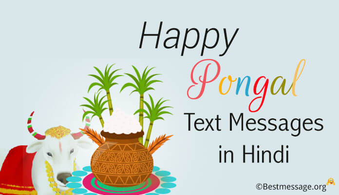 Happy pongal festival wishes and text messages in hindi pongal pongal love text messages hindi pongal wishes messages and pongal greetings images m4hsunfo