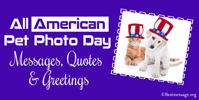 All American Pet Photo Day Messages, Quotes, Greetings