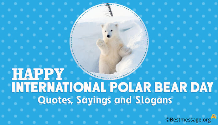 International Polar bear day messages, quotes, sayings and slogans