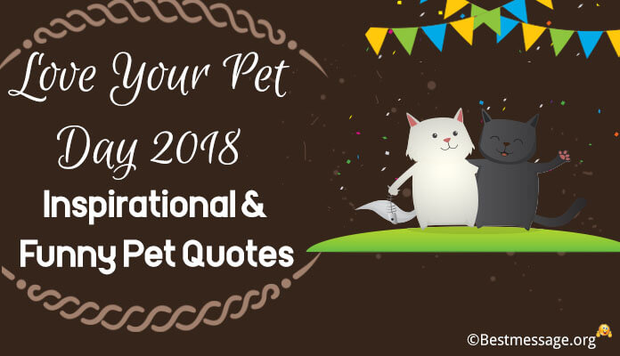 Love Your Pet Day Greeting messages, Inspirational & Funny Pet Quotes images