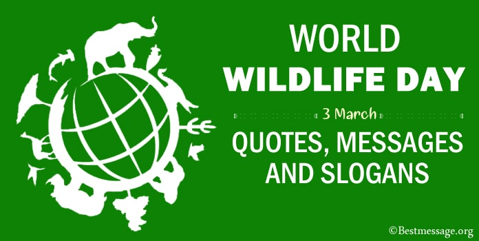 World Wildlife Day Messages, Wildlife Quotes, slogans, Sayings