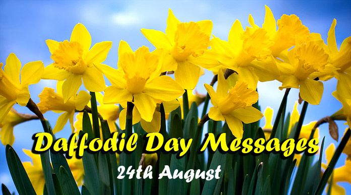Daffodil Day 24th August 2018 Messages Friends & Family Wishes