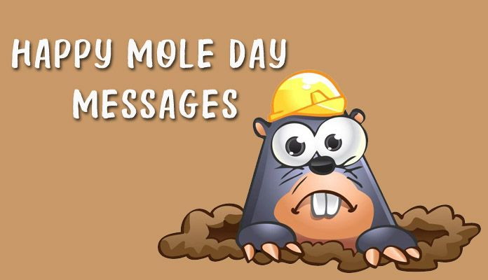 Happy Funny Mole Day Jokes and Humor Messages - 23 october