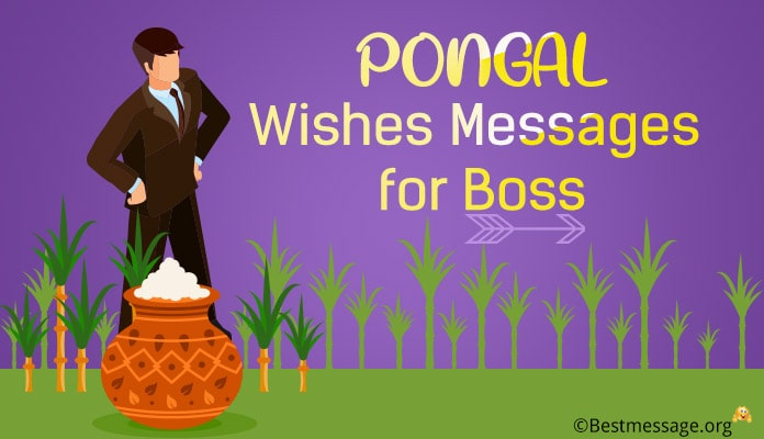 Happy Pongal Messages for Boss - Pongal Wishes Greetings