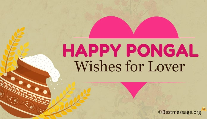 Happy Pongal Wishes for Lover - Pongal Greetings Messages