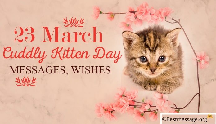 Cuddly Kitten Day Messages, Greetings Wishes Image - 23 March