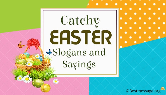 Best Easter Slogans and Sayings - Bunny Slogans