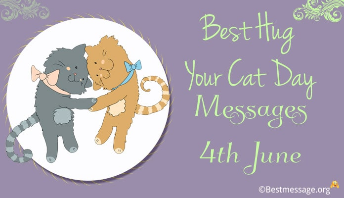 Hug Your Cat Day Messages image