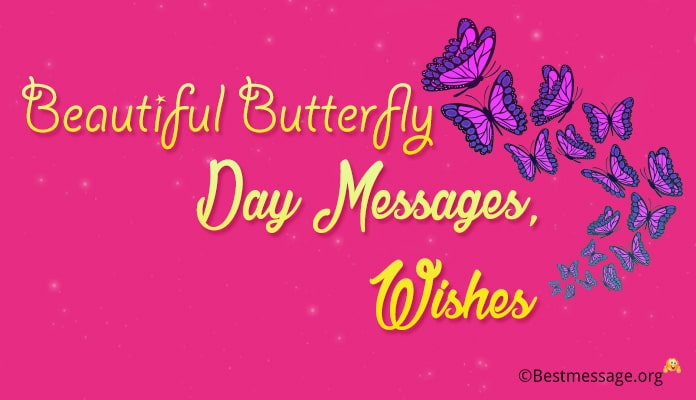 Butterfly Day Messages, Butterfly Wishes, Greetings Image
