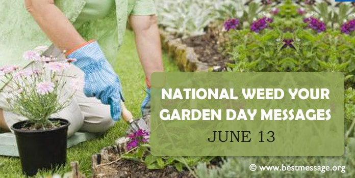 National Weed Your Garden Day Messages