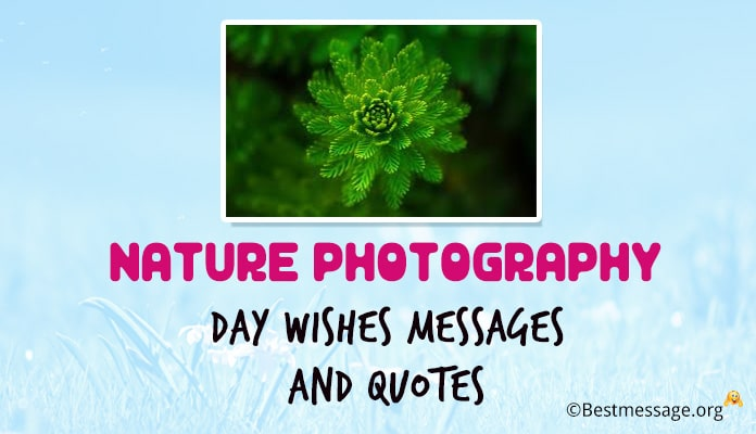 Nature Photography Day Wishes Messages