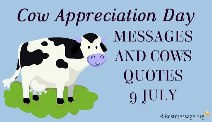 Cow Appreciation Day Messages - Cows Quotes pictures