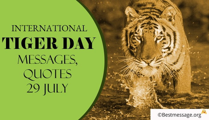 International Tiger Day Messages, Tiger Day Pictures, Wishes, quotes