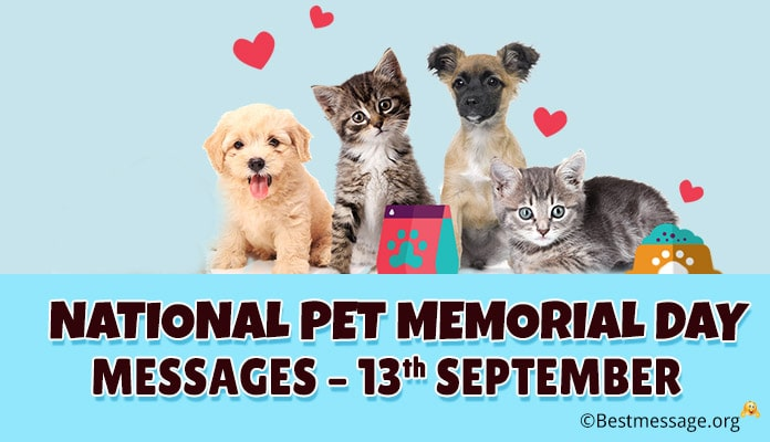 National Pet Memorial Day Messages, Quotes Sayings