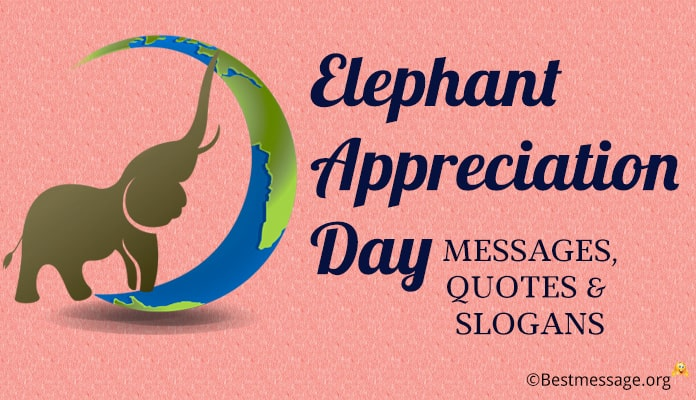 Elephant Appreciation Day Messages, Elephant Quotes, Slogans