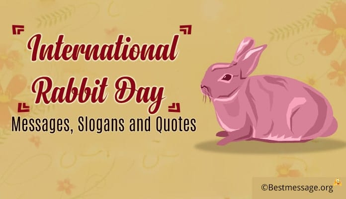 International Rabbit Day Messages, Rabbit Slogans, Quotes