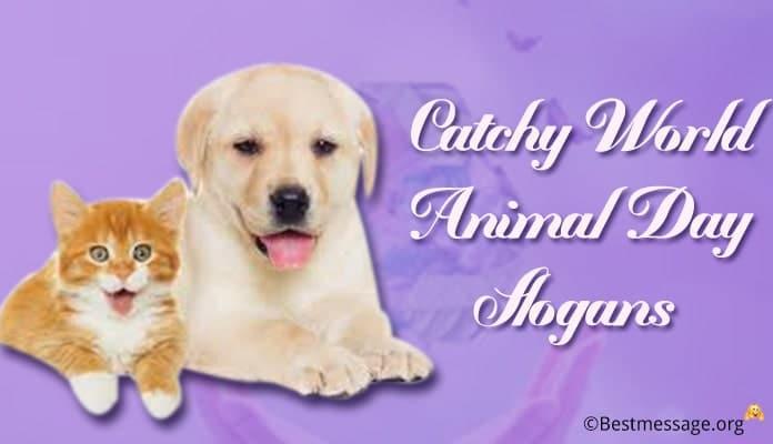 World Animal Day Slogans, Animal Care Slogans