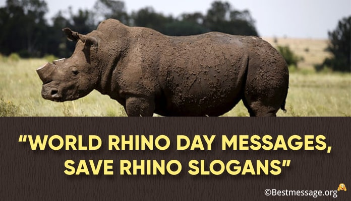 World Rhino Day Messages, Save Rhino Slogans