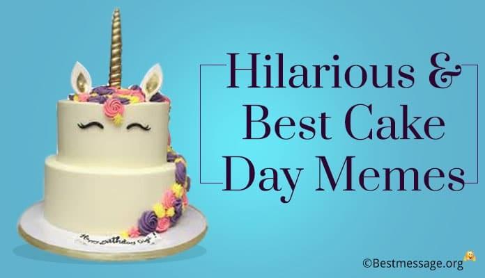 Best Cake Day Memes - Hilarious Cake Memes