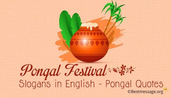 Pongal Festival Slogans - Pongal Quotes