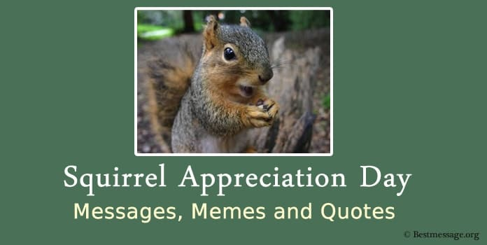 Squirrel Appreciation Day Messages, Memes Quotes