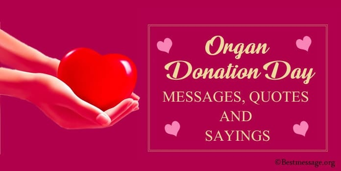 Organ Donor Day Messages, Organ Donation Quotes, Sayings