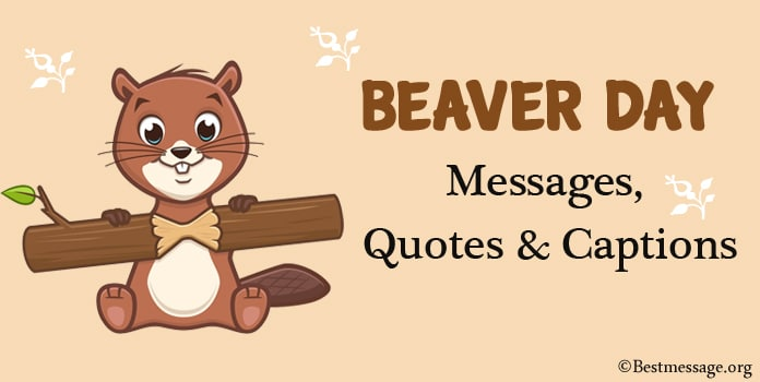 Beaver Day Messages, Inspirational Quotes, Captions