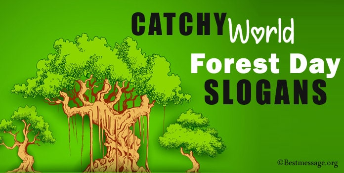 World Forest Day Slogans - Save Forest Slogans