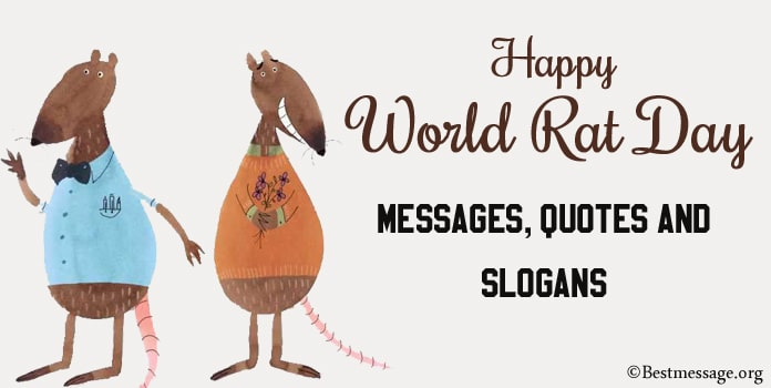Rat Day Messages, Rat Quotes, Catchy Rat Slogans