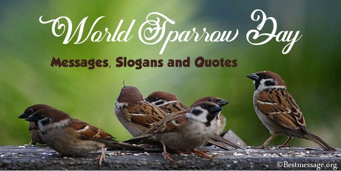 Sparrow Day Wishes Messages, save birds Slogans, Sparrow Quotes