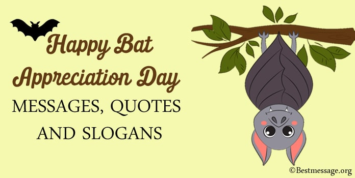 Bat Appreciation Day Messages, Bat Appreciation Quotes, Slogans