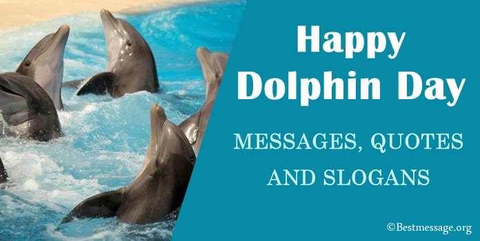 Dolphin Day Messages, Dolphin Quotes, Dolphin slogans