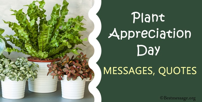 Plant Appreciation Day Messages, Appreciation Quotes