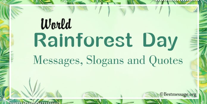 World Rainforest Day Messages, Rainforest Slogans, Quotes