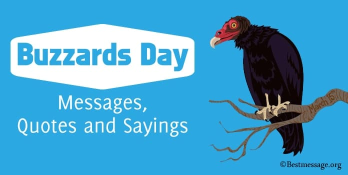 Buzzards Day Messages, Buzzards Quotes and Sayings