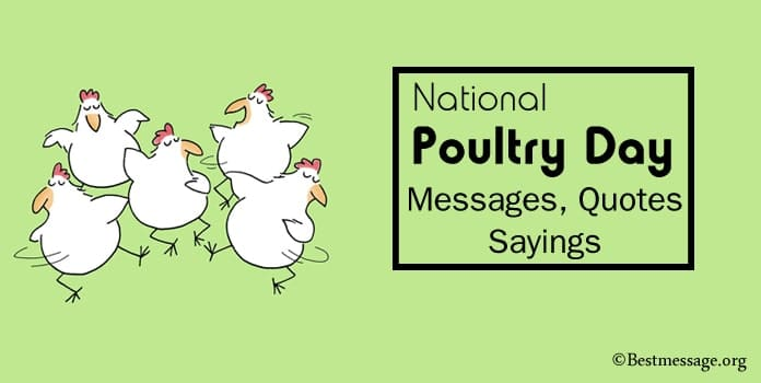 National Poultry Day Messages, Poultry Quotes and Sayings