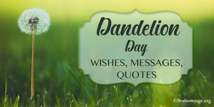 Dandelion Day Messages, Dandelion wish quotes